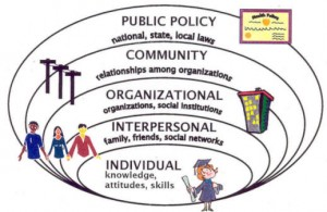 public policy, community, organizational, interpersonal, individual